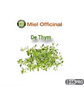 Miel Officinal Thym