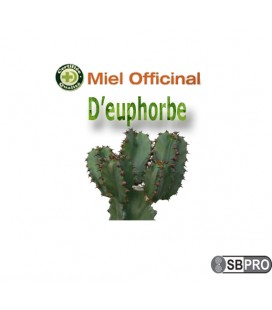 Miel officinal d'euphorbe (darmous)